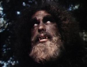 Bigfoot_andre